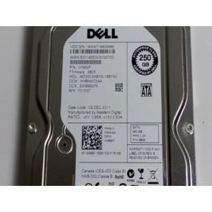 """DELL 250GB SATA II 3.5"""" 7200RPM 3GBPS HDD Hard Disk Drive - H962F 0H962F"""
